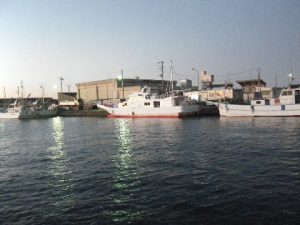oharabay13