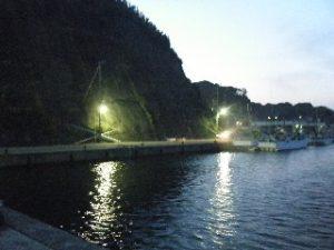 川津港 港内03 ナイター照明