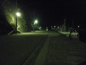 川津港 港内04 ナイター照明