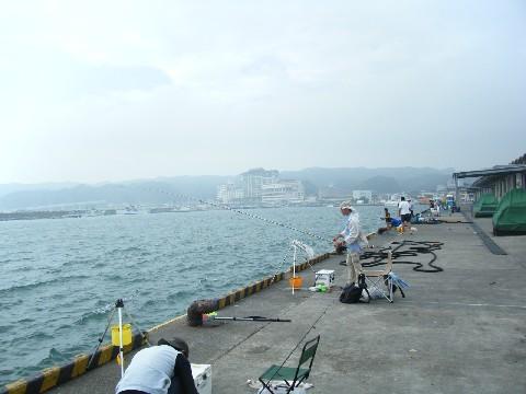 勝浦港 全景