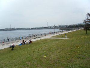東扇島西公園 混みまくり02