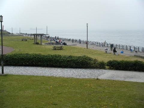 東扇島西公園 混みまくり