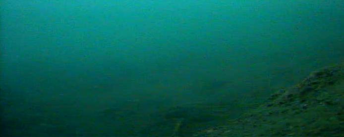 江ノ島 白灯堤防 海底