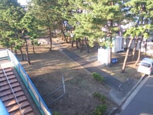 猫実川 公園