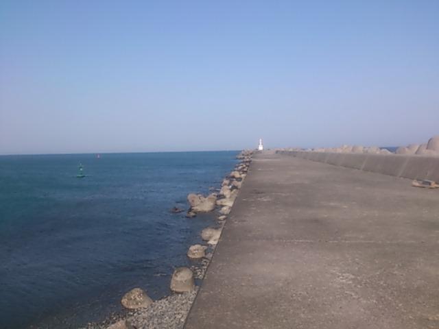 大井川港 全景
