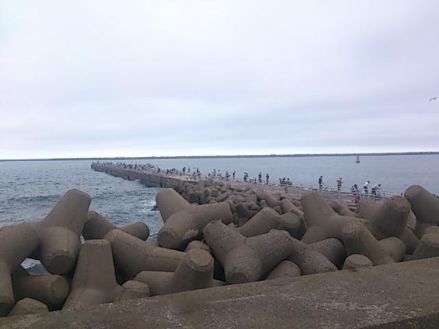 鹿島港魚釣園 全景