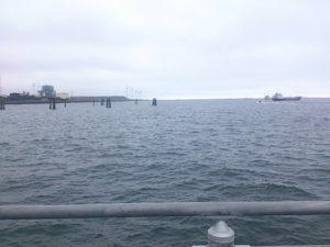 鹿島港魚釣園 海の状況