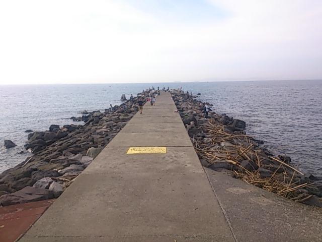 龍島港 全景