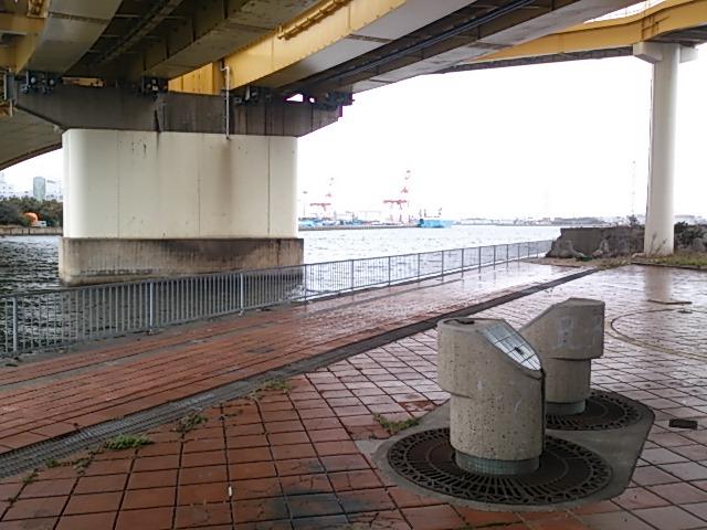 泉大津大橋下01