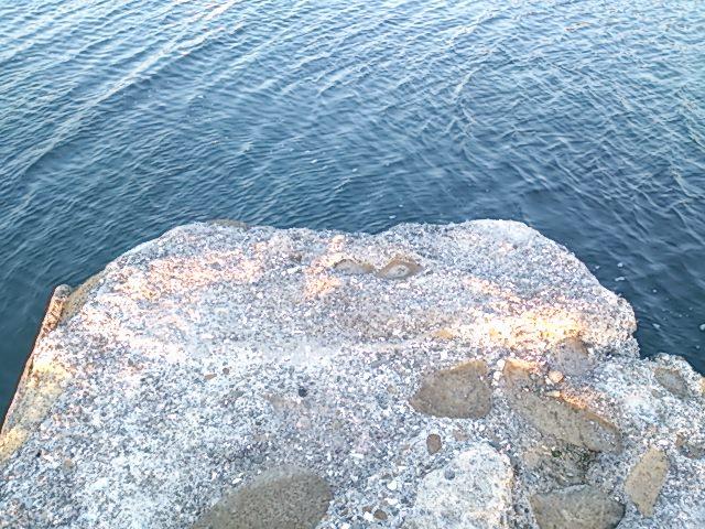 川下港 堤防先端