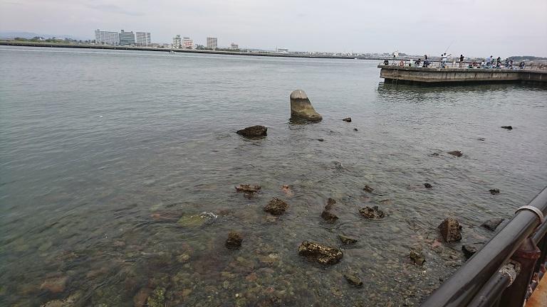浜名湖 新居海釣公園浅場