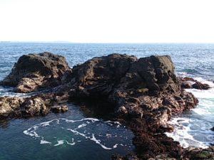 安房崎灯台 前の島02