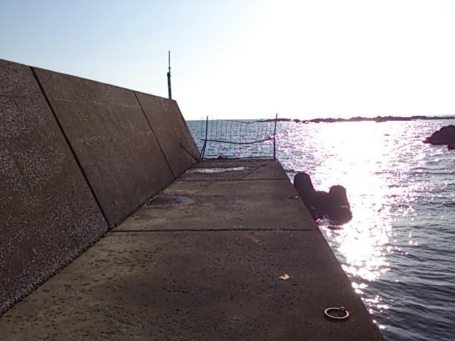 根本港 左堤防先端