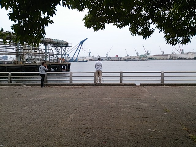 大岡川分水路全景
