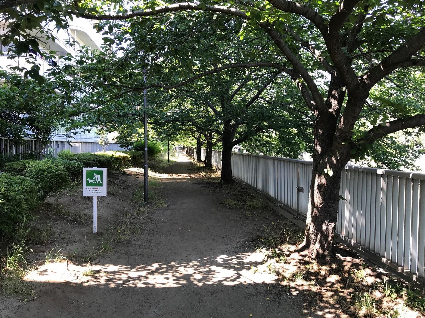 菊川橋 遊歩道