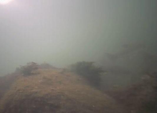 高洲海浜公園 水中写真03