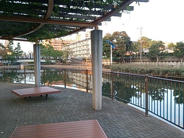 横十間川親水公園02