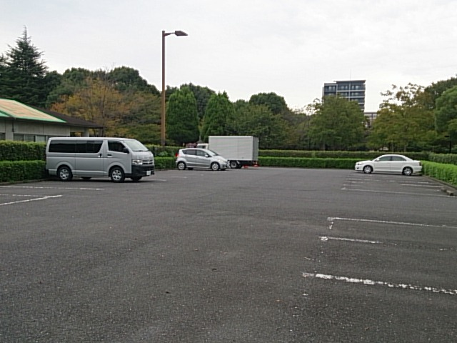 木場公園 駐車場03