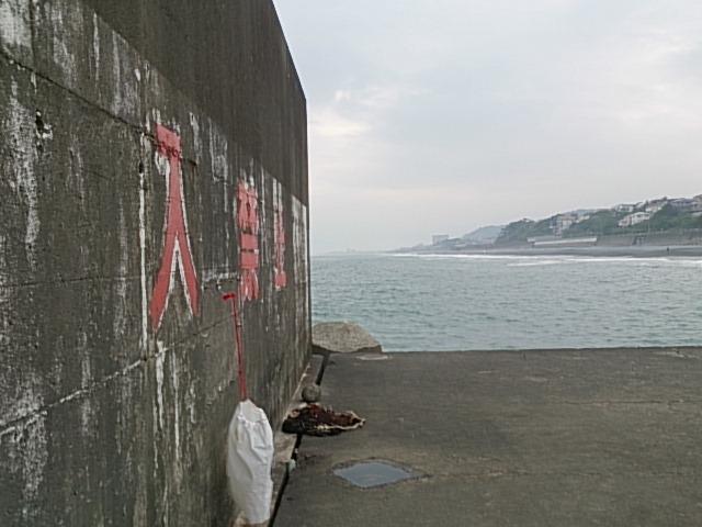 梅沢海岸05