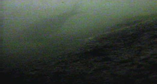 月島 佃3丁目公園裏 水中写真01