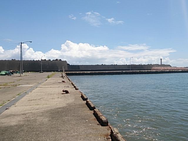 天津港 釣り場メイン