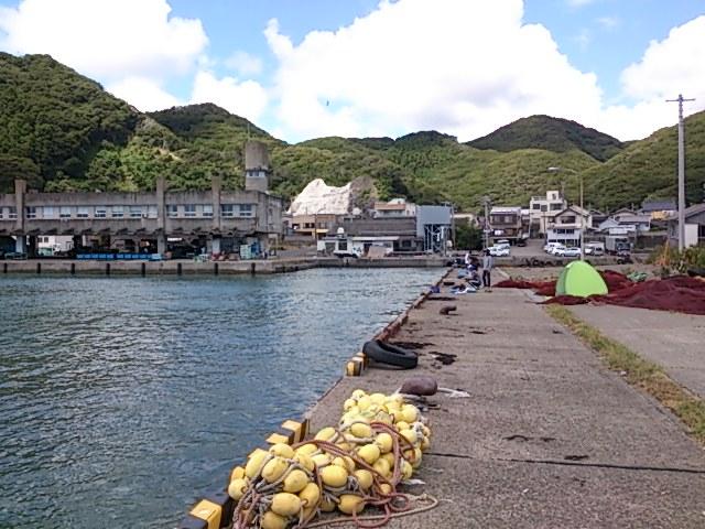 天津港 釣り可能地区