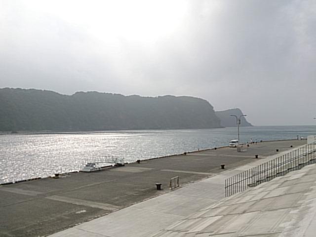 大島 岡田港01