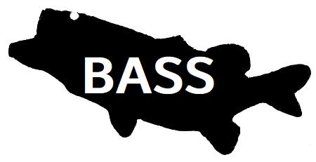 BASS rogo
