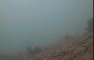 乙浜港 水中写真05 海底