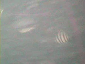 岩船港 水中写真01