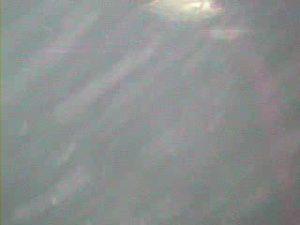 岩船港 水中写真05