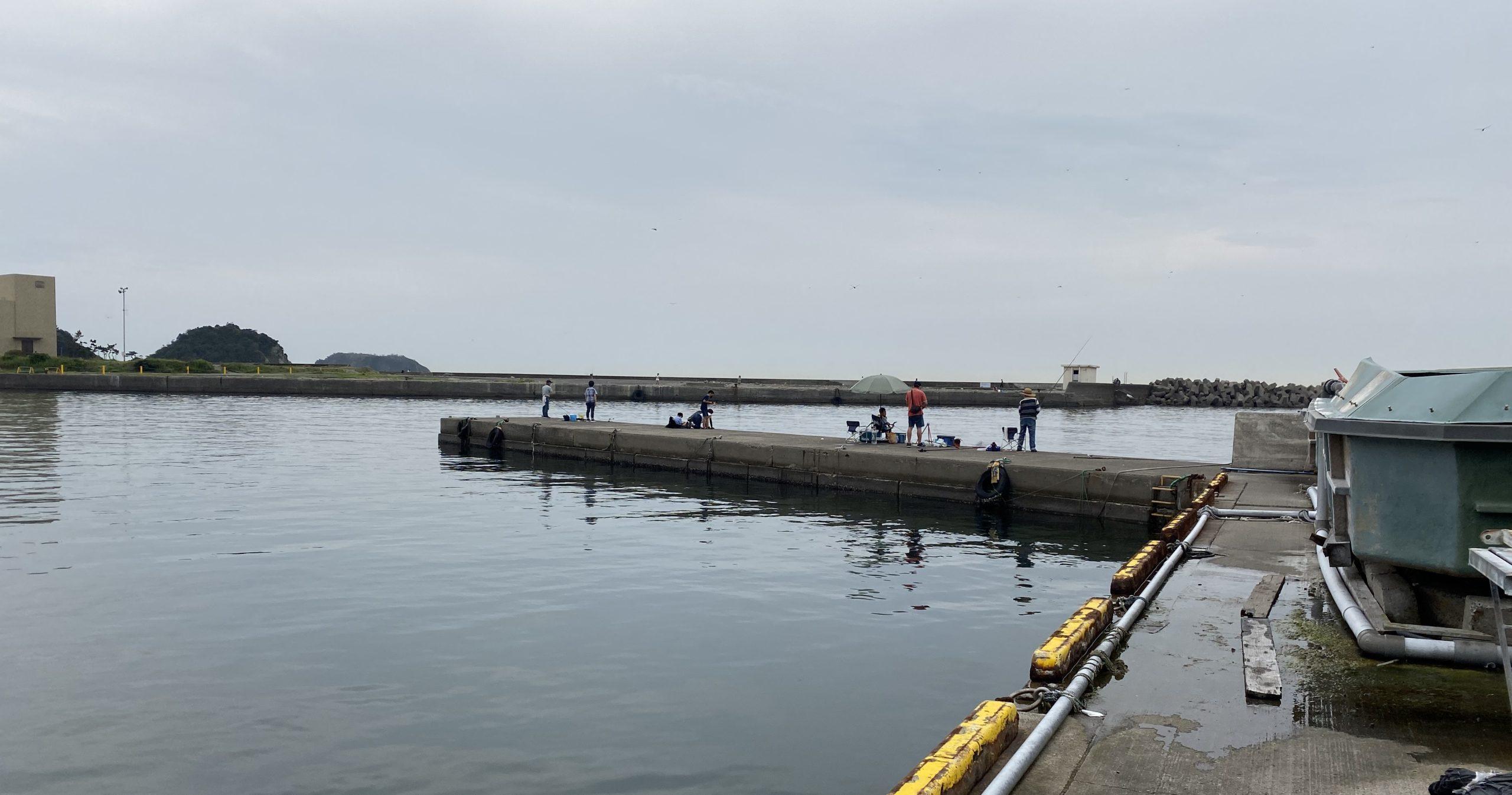 保田港 釣り ポイント