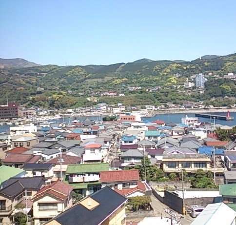 稲取港 全景01