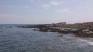 宝来島 海岸線