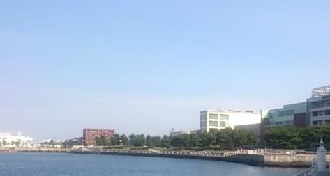 新港パーク 全景