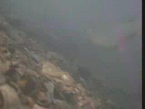 猫実川河口 水中写真01 海底