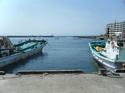 長井漁港全景