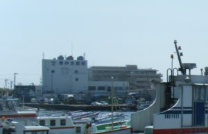 長井漁港 漁協