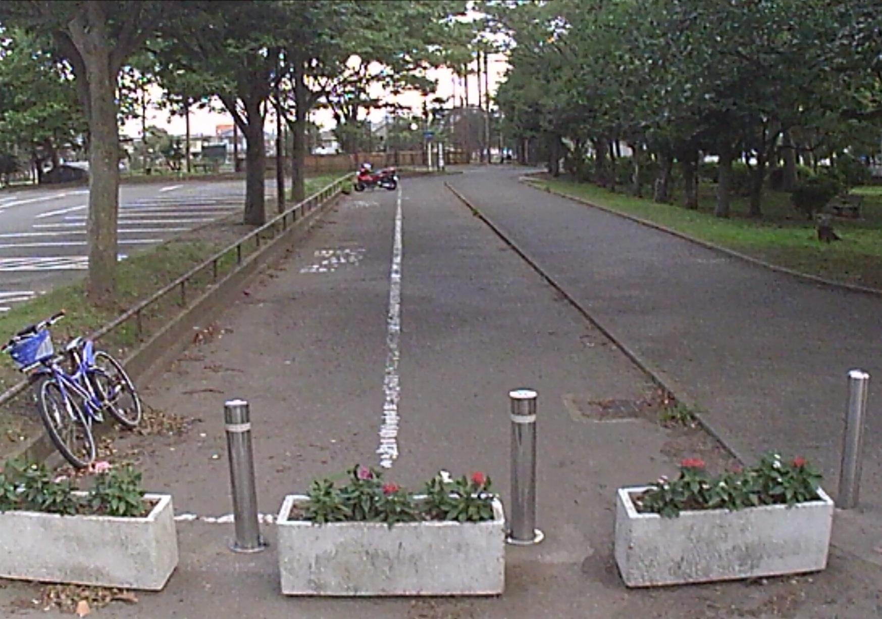 野島公園 駐輪場