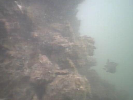 飯岡漁港 水中写真04