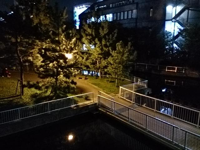 横十間川親水公園 仙台堀川公園ナイター