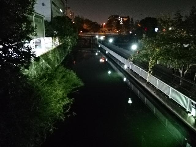 仙台堀川公園ナイター01