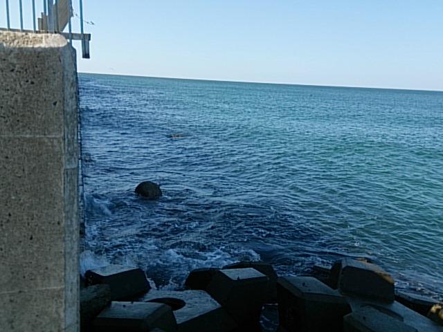 南浜船溜まり08