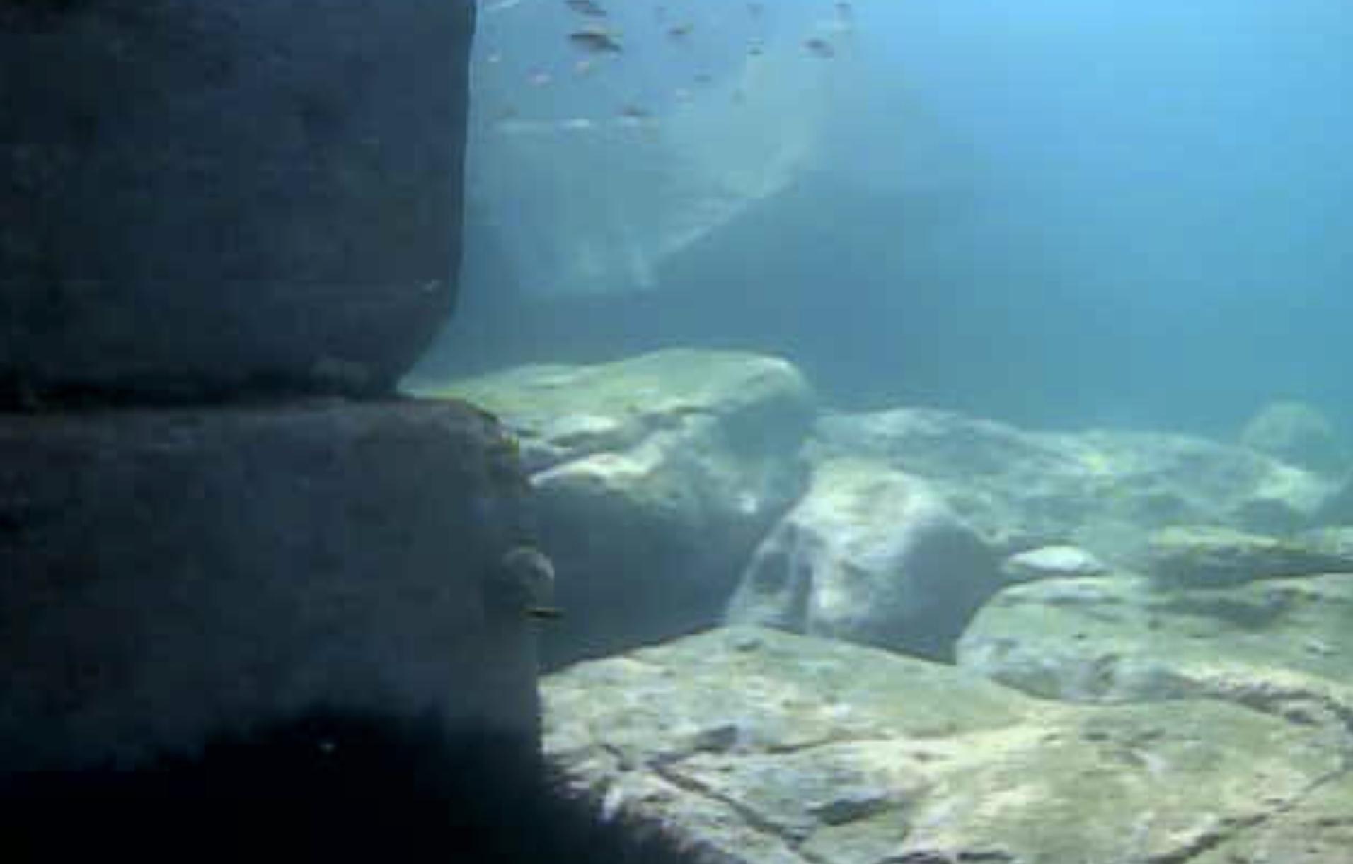 伊王島ふれアイランド前水中写真07
