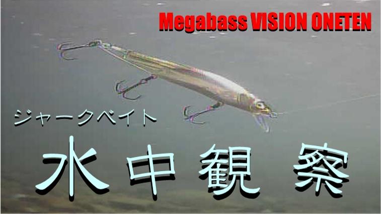水中観察 Megabass VISION ONETEN