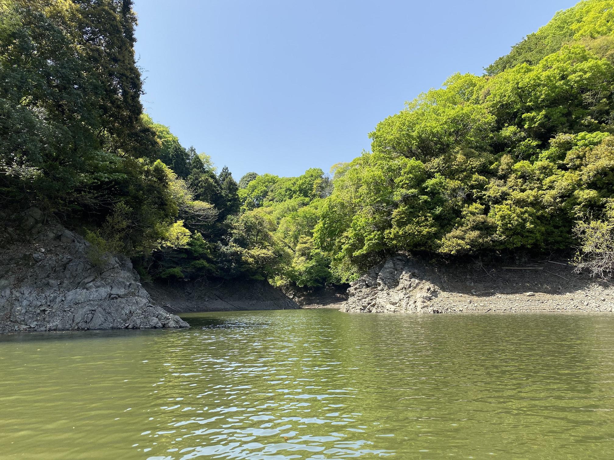 津久井湖 大沢ワンド 奥