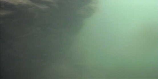 津久井湖 中村台地 壁面 水中写真
