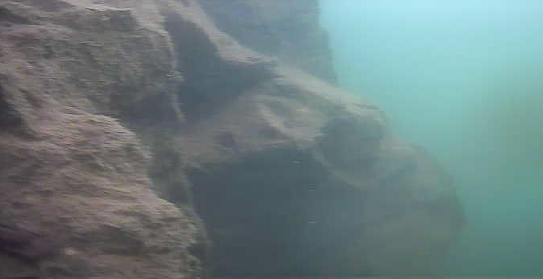 津久井湖 中村台地 斜面 水中写真