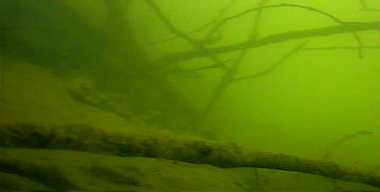 津久井湖 バス釣りポイント 鐘ヶ淵 水中映像