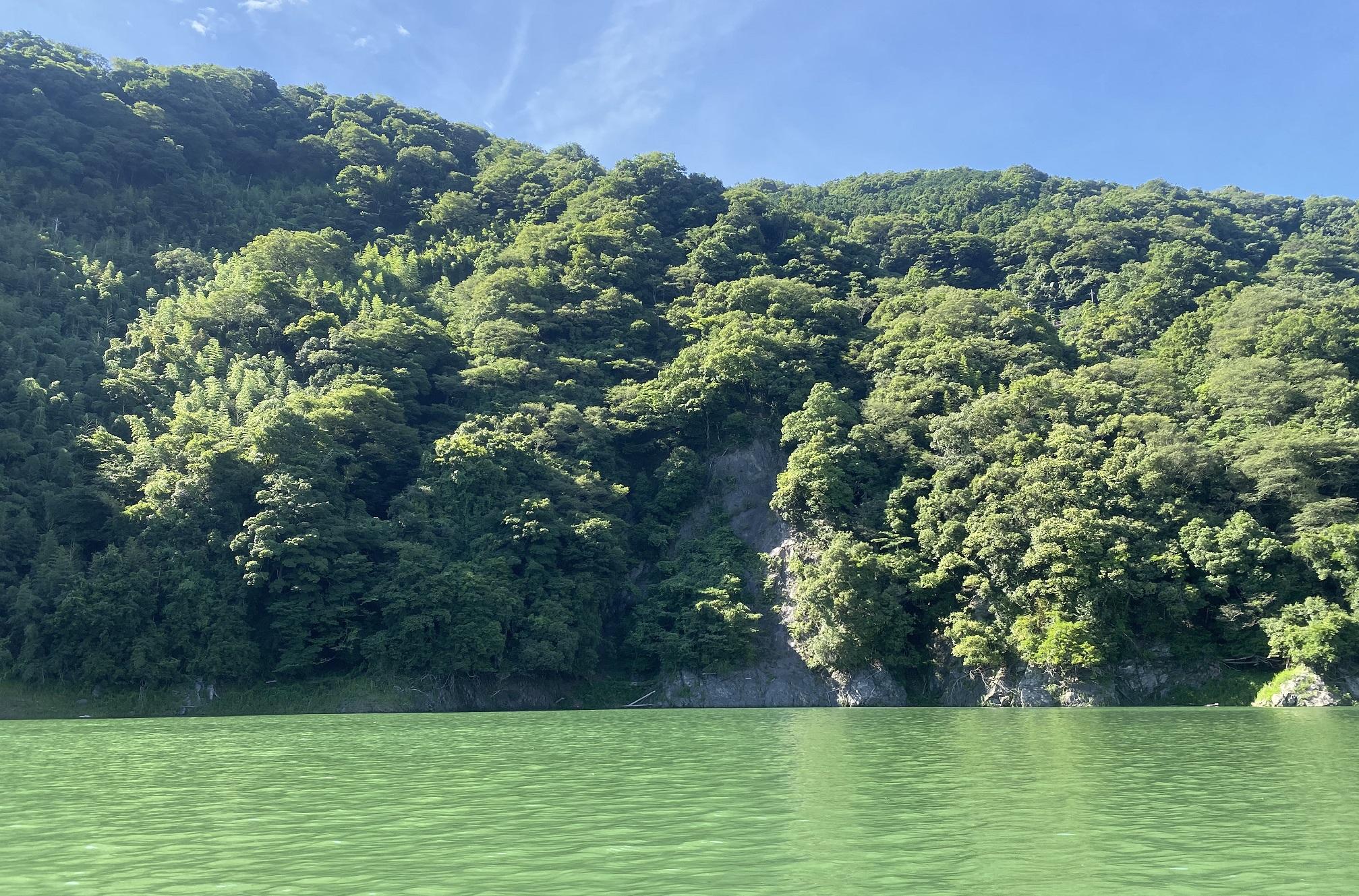 津久井湖 バス釣りポイント 鐘ヶ淵